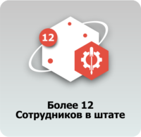 12 сотрудников